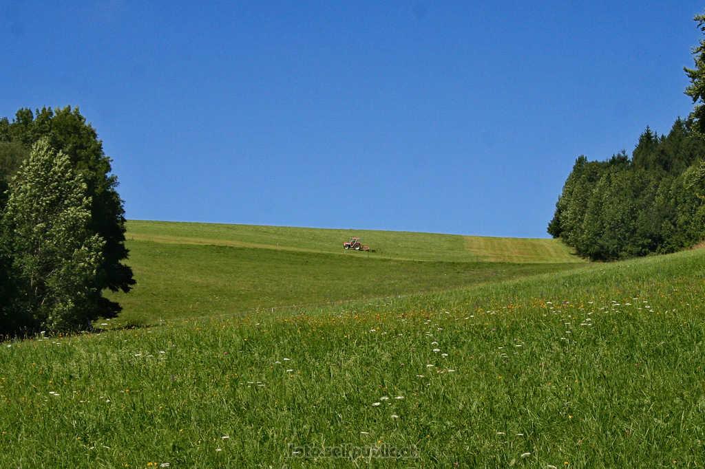Ein Traktor nahe Steinwandgraben Richtung Ebeltal  Wie lange können die Bauern die Landschaft so schön pflegen?