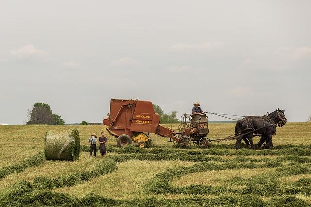 landwirtschaft 1434445784