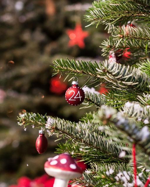 weihnachtsbaum 1450950109