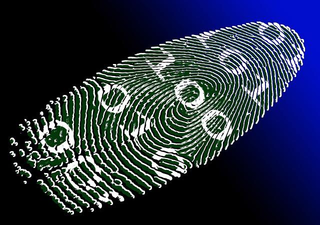 Cyber-Kriminelle sind raffiniert, aber auch sie hinterlassen Spuren...