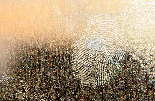 fingerprint 1454664825