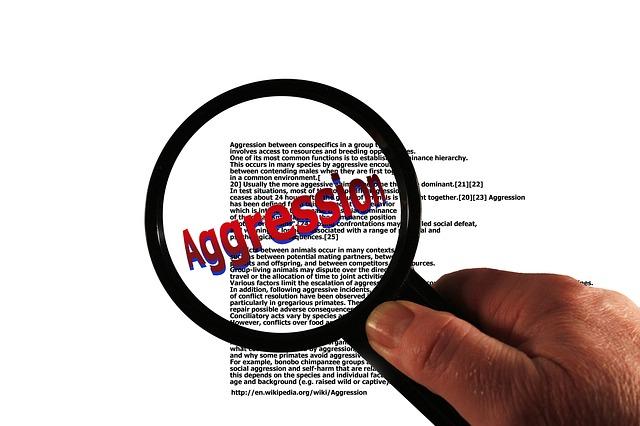 aggression 1462350571