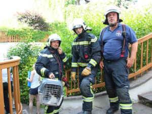 Katze gerettet