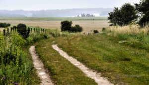 Stonehenge war um ein Vielfaches größer als gedacht - die mysteriösen Steinkreise sind nur das Zentrum eines riesigen Kultplatzes ungeahnten Ausmaßes   Foto: ORF/Interspot
