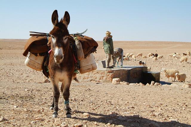 Tunesien 1482440163
