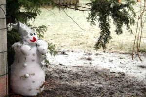 Vom Winde verweht - Schneemann entlaufen