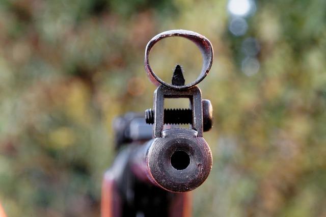 gewehr 1485273729