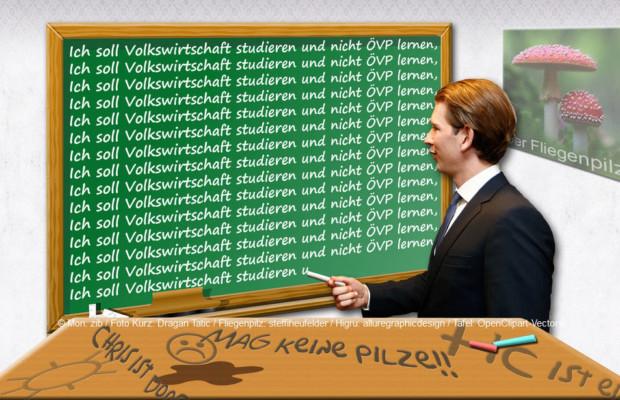 "Pilz zu Kurz: ""Sie haben ja nur ÖVP gelernt!"" | © Mon: zib / Foto Kurz: Dragan Tatic / Fliegenpilz: steffiheufelder / Higru: alluregraphicdesign / Tafel: OpenClipart-Vectors"