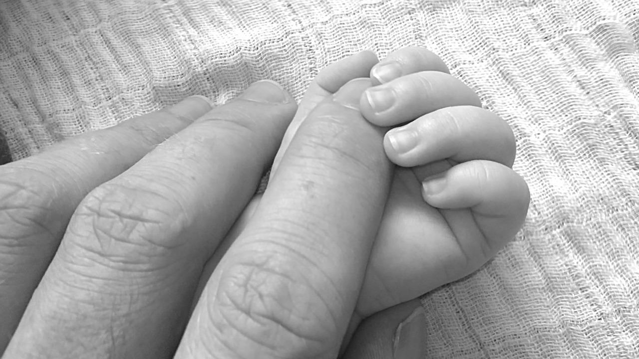 Baby 1511797876