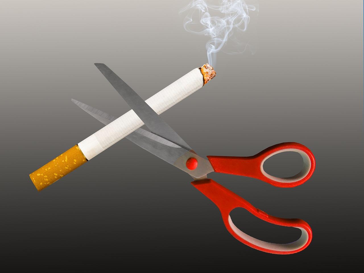 rauchverbot 1518949788