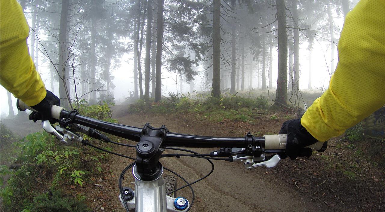 Fahrrad 1530447382