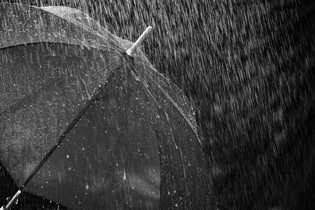 Regenschirm 1537025407