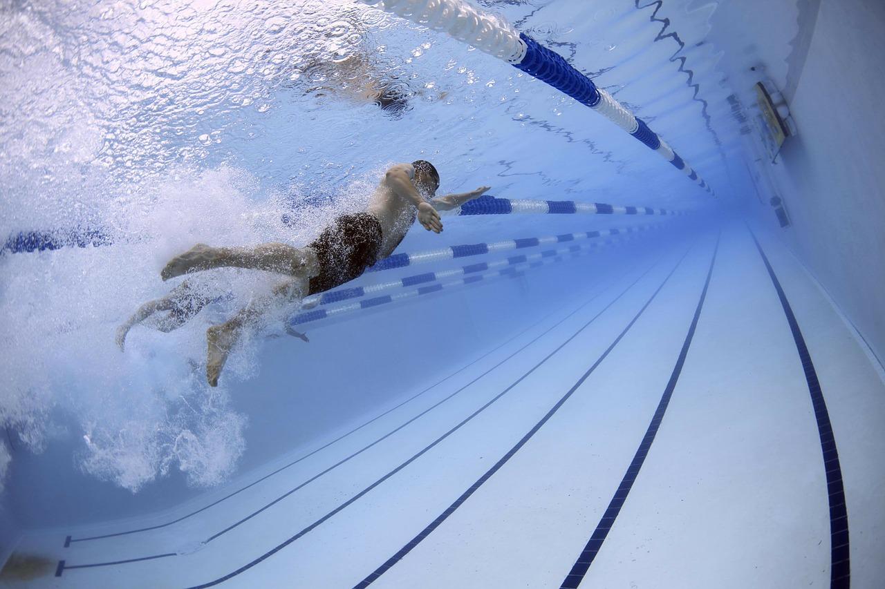 Schwimmbad 1541238279