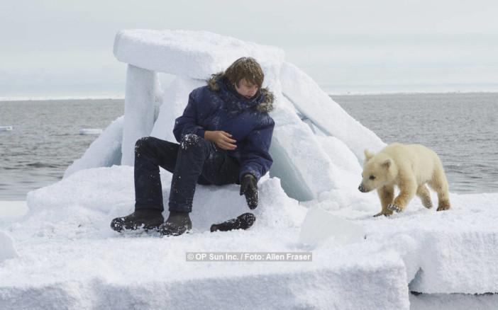 Midnight Sun - Eisbär auf Reisen