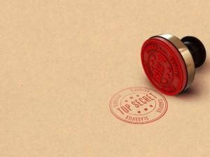 spion 1557572907