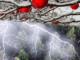 streit weihnachtszeit