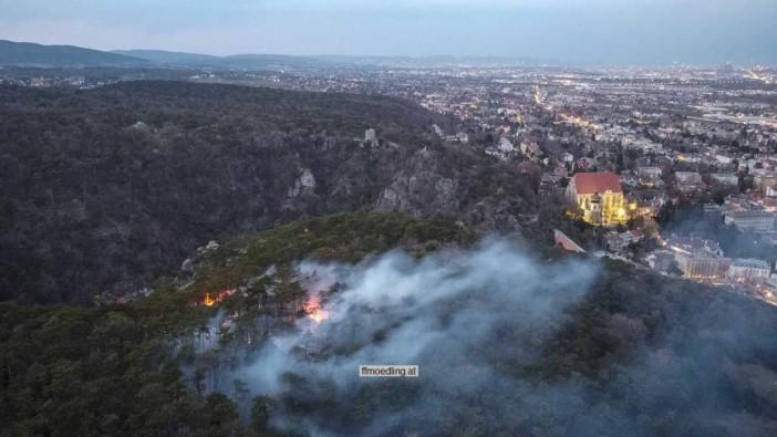 Waldbrand Mödling 1.4.2021